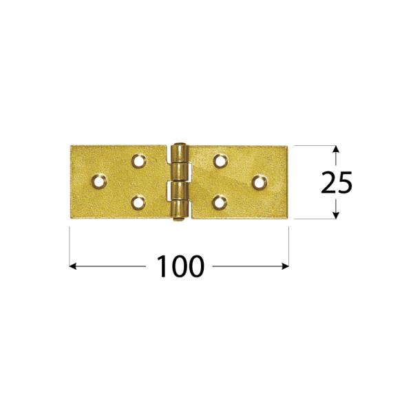 Z 100 a Závěs stavební 100x25x1,5 mm 1