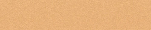 Abs oranz 14551 22*0,5 /0551 PE 1