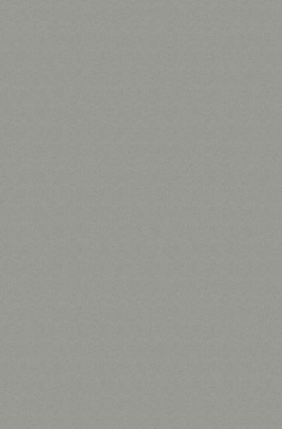 List.PD 0859 PE Platinum 4,2m