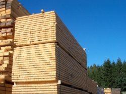Stavební hranoly, latě, prkna, fošny 2
